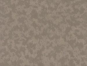 575569-small